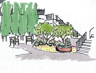 Berkeley Cottage Garden Concept Lemon Trees07112014