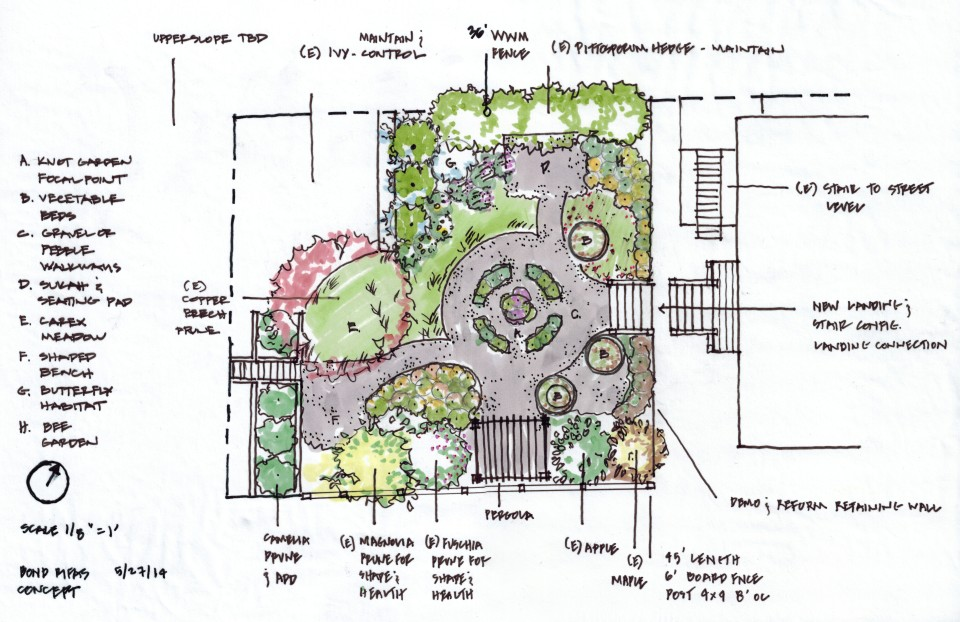 Berkeley cottage garden concept plan ian moore design for Cottage garden plans designs